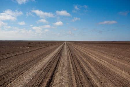 Salt road from Skeleton coast, Namibia photo