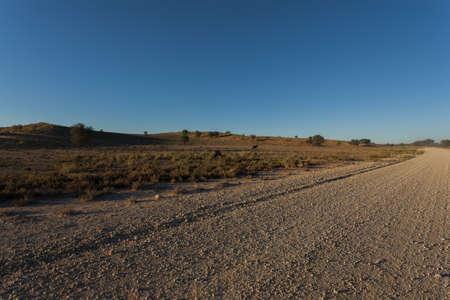 kgalagadi: A view from Kgalagadi Transfontier Park, South Africa