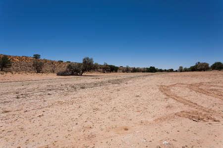 kgalagadi: Panorama from Kgalagadi National Park, South Africa