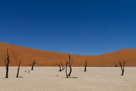 sossusvlei: A view from Dead Vlei, Sossusvlei Namibia Stock Photo