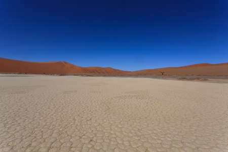 burchell: landscape with red dunes from Hidden Vlei Sossusvlei Namibia