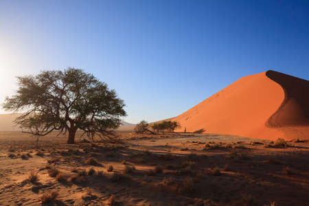 Red dunes on the road to Sossusvlei Namibia photo
