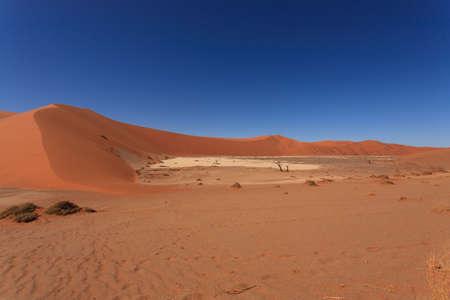 vlei: Panorama of red dunes from Hidden Vlei Sossusvlei Namibia