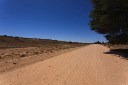 south africa soil: Panorama from Kgalagadi National Park, South Africa