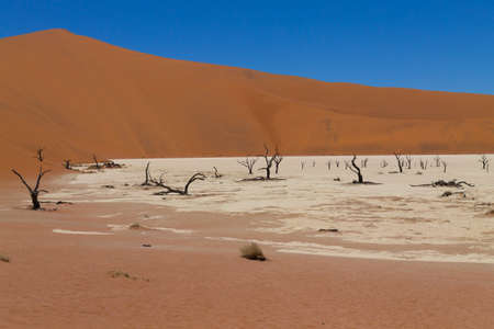 vlei: A view from Dead Vlei, Sossusvlei Namibia Stock Photo