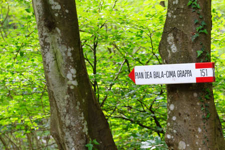 indicative: Close up of an isolated signboard along a trekking path. Direction indication. Arrow