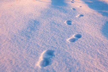 Menselijke voetstappen op bevroren sneeuw