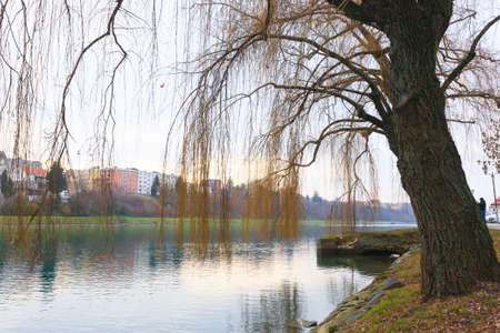 drava: Beautiful slovenian landscape. Drava river in Maribor.