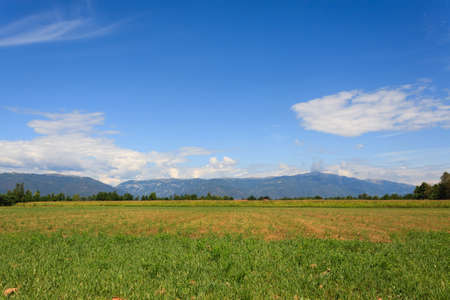 uncultivated: Uncultivated field with mountains in background. Italian agriculture. Rural scenery
