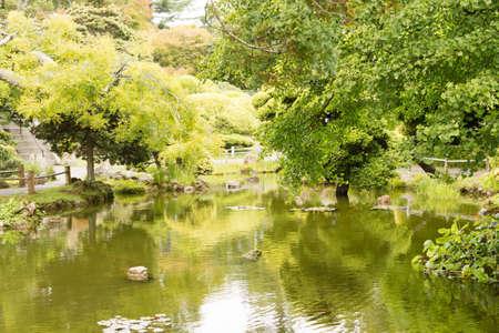 japanese tea garden: The Japanese Tea Garden in Golden Gate Park in San Francisco. Relaxing scenery