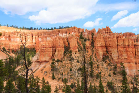 pinnacle: Panorama from Bryce Canyon National Park, USA. Hoodoos, geological formations. Beautiful scenery