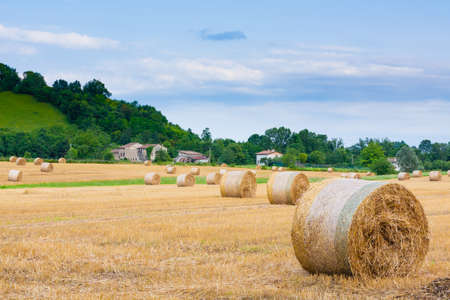 Italian countryside panorama. Round bales on wheat field. Agriculture, rural life