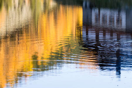 House reflected on water with yellow pines. Autumn panorama. House mirrored
