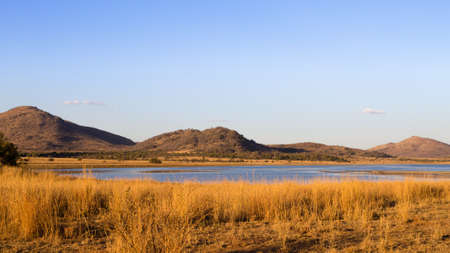 Panorama from Pilanesberg National Park, South Africa. Dry grass at twilight. Safari in Africa Archivio Fotografico