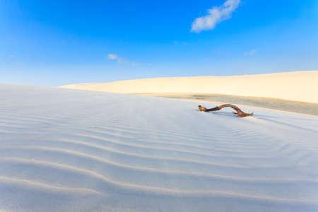白い砂丘レンソイス Maranhenses 国立公園、ブラジルからのパノラマ。雨水のラグーン。ブラジル風景