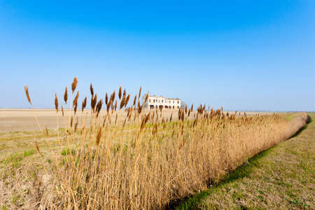 Rural Italian landscape from Po river lagoon.Plowed fields with perspective lines. Abandoned warehouse