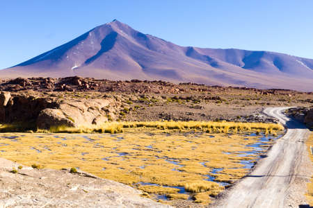 Beautiful bolivian landscape,Bolivia. Lakes and associated wetlands called Bofedales. Stock Photo