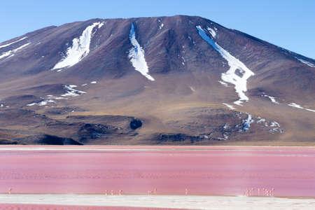 Laguna Colorada landscape,Bolivia. Beautiful bolivian panorama. Red water lagoon Stock Photo