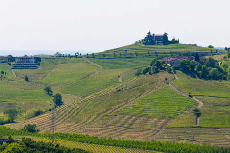 Beautiful Italian landscape. Vineyards from Langhe region,Italy agriculture. Unesco world heritage site