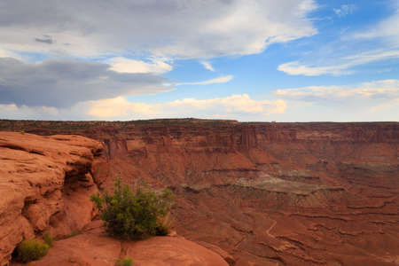 Panorama from Canyonlands National Park, USA. Red rocks, geological formations