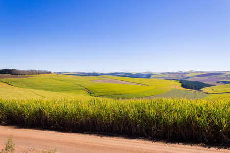Valley of a Thousand hills landscape. Green hills panorama. South African landmark near Durban.