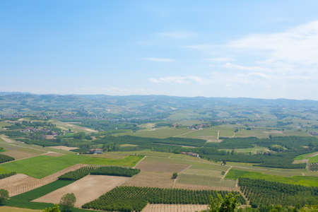 Beautiful Italian landscape. Vineyards from Langhe region,Italy agriculture.