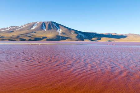 Paisaje de Laguna Colorada, Bolivia. Hermoso panorama boliviano. Laguna de agua roja