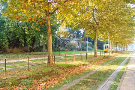 Milan tramway in perspective during autumn season. Traditional transportation mode. Urban panorama.