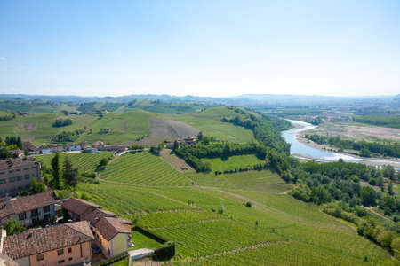 Tanaro river view. Vineyards from Langhe region,Italy agriculture. Reklamní fotografie