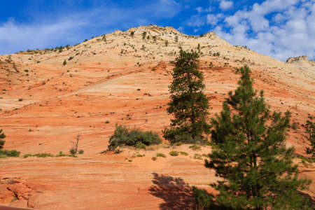 Panorama from Zion National Park, Utah USA. Geological formations. Beautiful scenery Reklamní fotografie