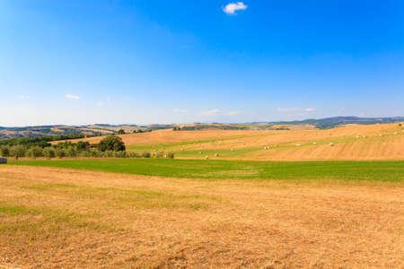 Tuscany hills landscape, Italy. Rural italian panorama.