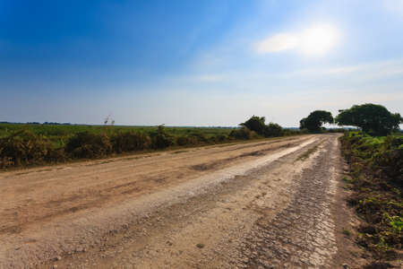 Brazilian dirt road in perspective. Famous Brazilian Transpantaneira dirt road. Pantanal area, Brazil Reklamní fotografie