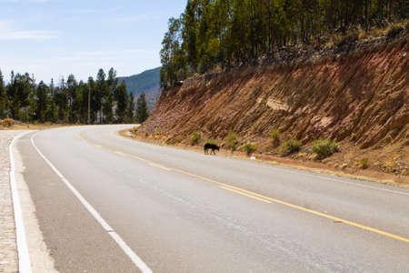 Perspective view tarmac road from Bolivia along the way to Tarabuco.