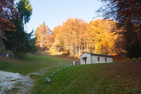 Autumn mountain landscape. Grappa mountain, Italian Alps
