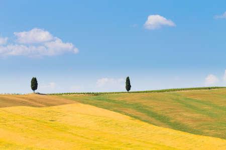 Tuscany hills landscape, Italy. Rural italian panorama. Stockfoto - 110749404
