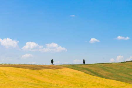Tuscany hills landscape, Italy. Rural italian panorama. Stockfoto - 110811474