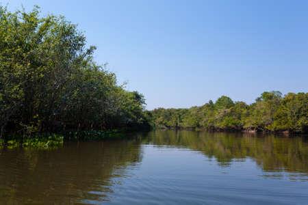 Panorama from Pantanal, Brazilian wetland region. Navigable lagoon. South America landmark