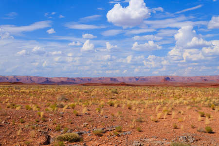 Arizona desert panorama. Yellow bush  and blue sky with red mountains in background. USA landscape Reklamní fotografie