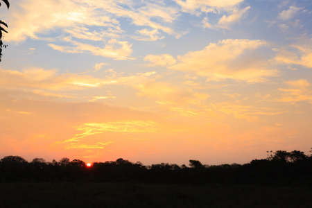 Sundown from Pantanal. Brazilian wetland region. Panorama from Brazil