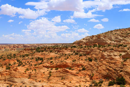 Arizona panorama from United States of America. Red rocks landscape 免版税图像