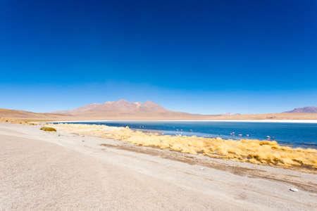 Laguna Canapa landscape,Bolivia. Beautiful bolivian panorama. Blue water lagoon