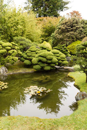 The Japanese Tea Garden in Golden Gate Park in San Francisco. Relaxing scenery