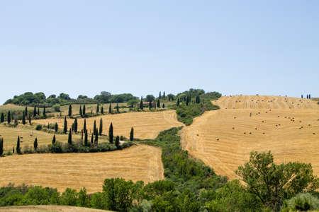 Tuscany hills view, Italy. Italian landscape, Toscana