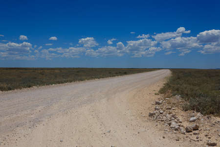 Panorama from Etosha National Park, Namibia