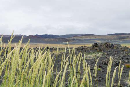 Iceland landscape near Hverfell volcano. Hverfjall, Iceland landmark