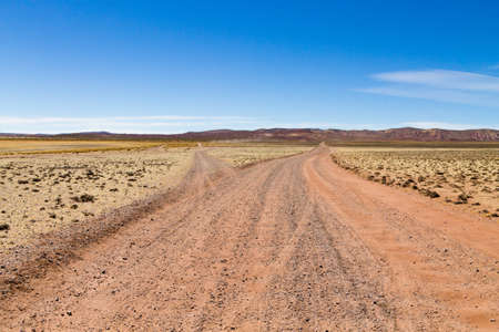 Bolivian dirt road perspective view,Bolivia. Andean plateau view