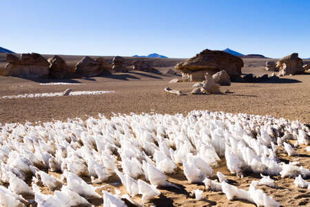 Ice formations modeled by wind from Bolivia. Andean plateau 版權商用圖片