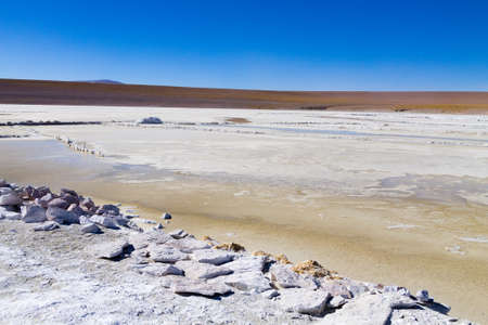 Bolivian lagoon view,Bolivia. Salar de Chalviri view.