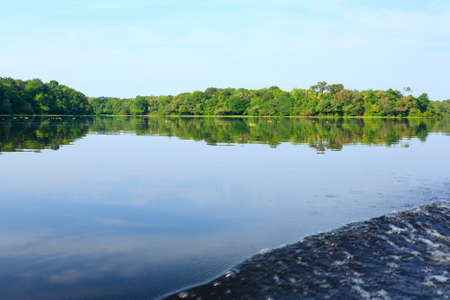 Panorama from Amazon rainforest, Brazilian wetland region. Navigable lagoon. South America landmark. Amazonia 免版税图像 - 132320208
