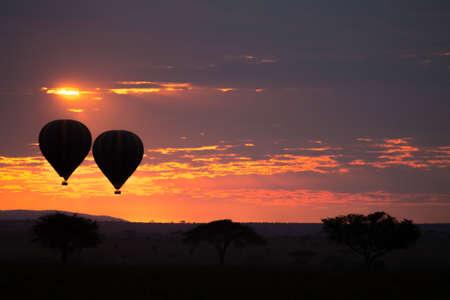 Dawn at Serengeti National Park, Tanzania, Africa. Hot air balloons on sky. African panorama
